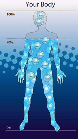 Water-In-Human-Body