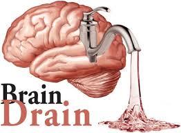 brain water