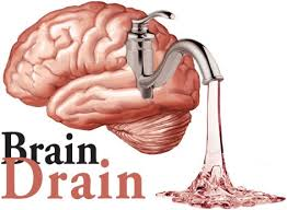 Did you know that if your brain is dehydrated by as little as 1% you LOSE  up to 10% brain capacity? It's no wonder we have brain fog!
